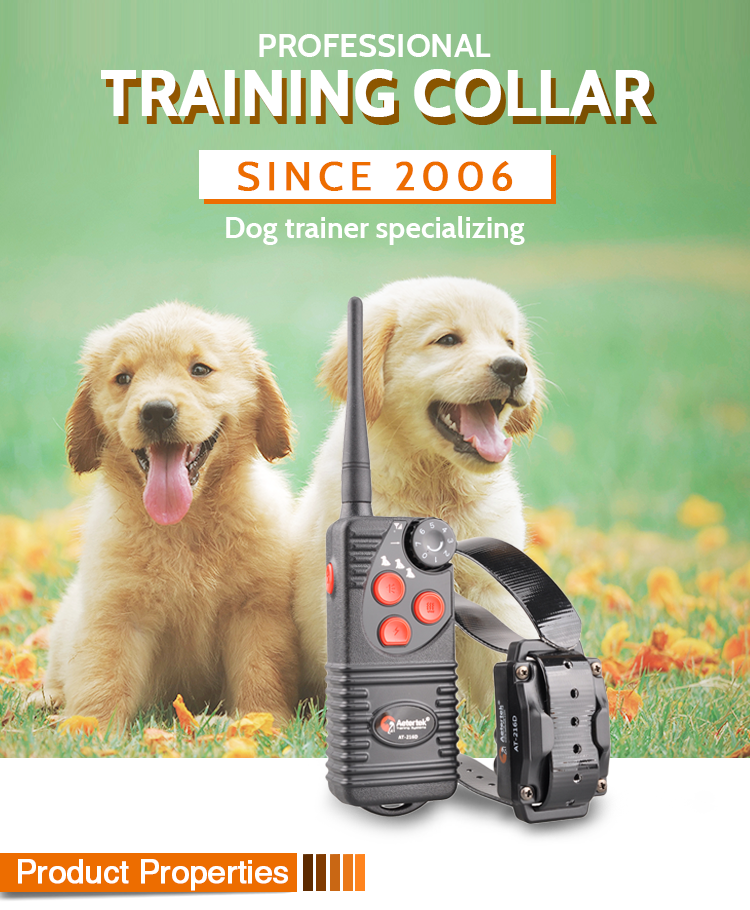 Rechargeable Remote Dog Trainer AT-216D