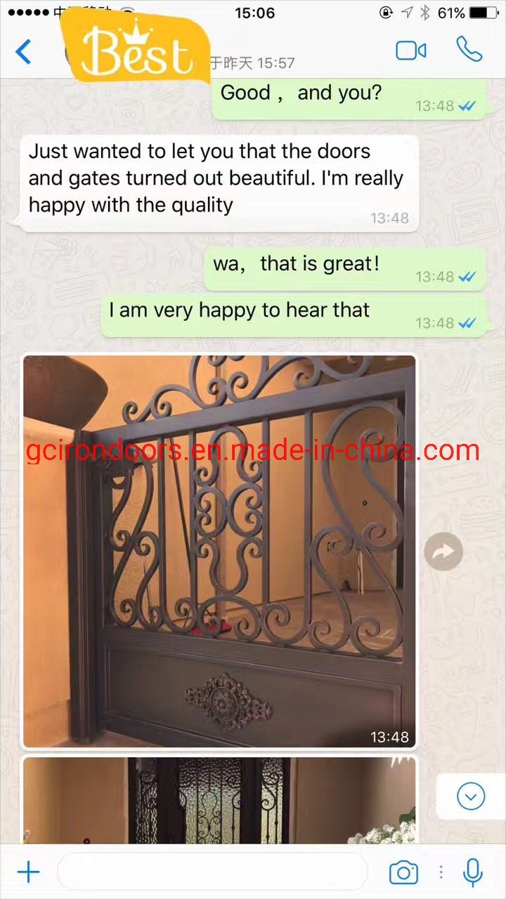 Luxury Decorative Forge Iron Fence for Villa